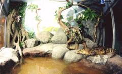 Севастопольский морской Аквариум-Музей. Изображение 1