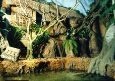 Севастопольский морской Аквариум-Музей. Изображение 2