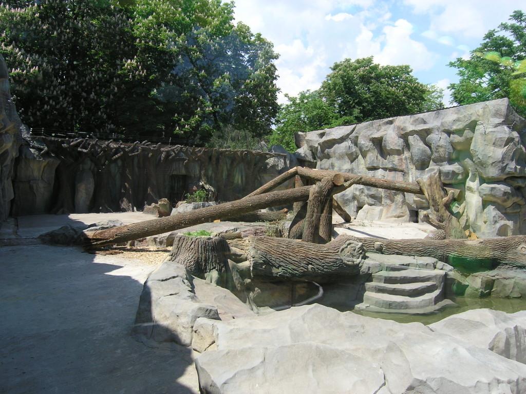 Киевский зоопарк. Медвежий континент - фото 5