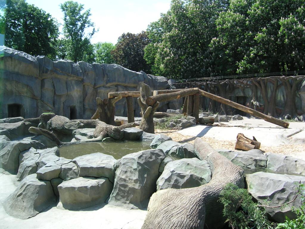 Киевский зоопарк. Медвежий континент - фото 6
