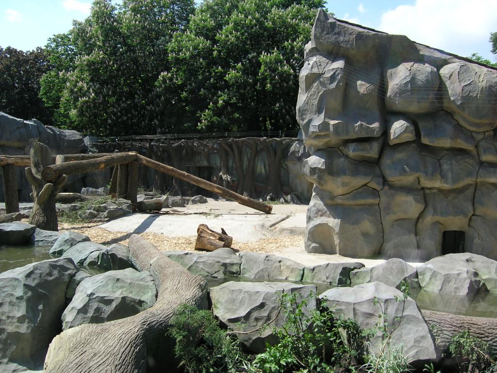 Киевский зоопарк. Медвежий континент - фото 7