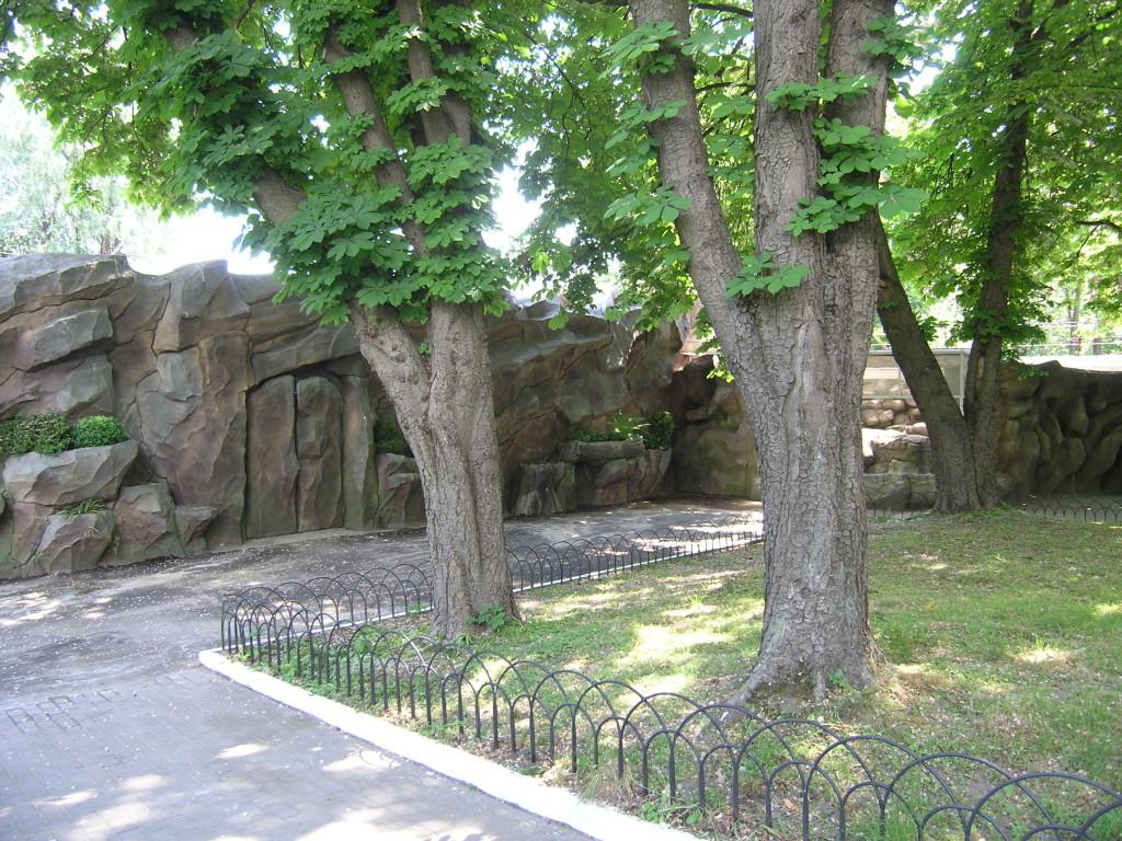 Киевский зоопарк. Медвежий континент - фото 9