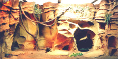 Севастопольский морской Аквариум-Музей. Изображение 4